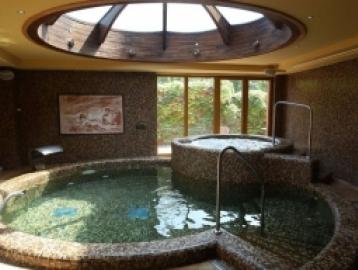 Laroba Wellness Hotel***