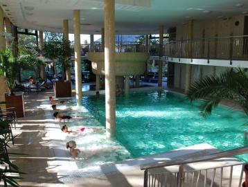 Wellness Hotel...